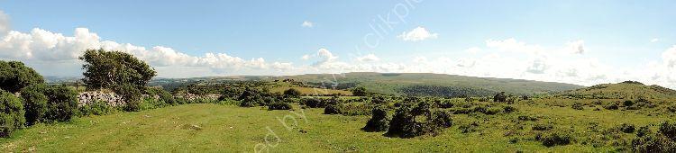 Panoramic 8