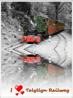 I Love Talyllyn Railway