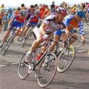 Elite Riders