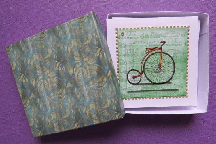 Bicycle Mode Box Set