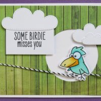 Some Birdie misses you