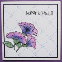 Purple & Pink Flowers - Birthday