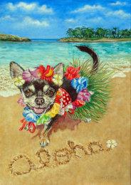 Tita in Hawaii