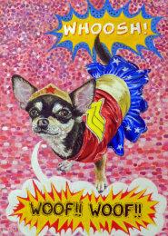 Tita the Wonder Chihuahua