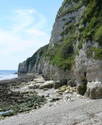 The cliffs At Beer