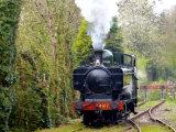 Steam train on Bodmin line.