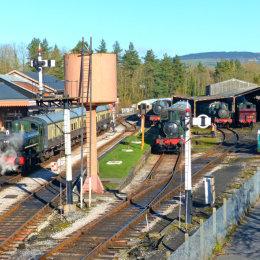 Buckfastleigh Station