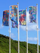 Flags in Exmouth
