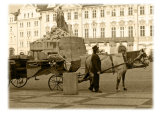 Horse & carriage in sepia