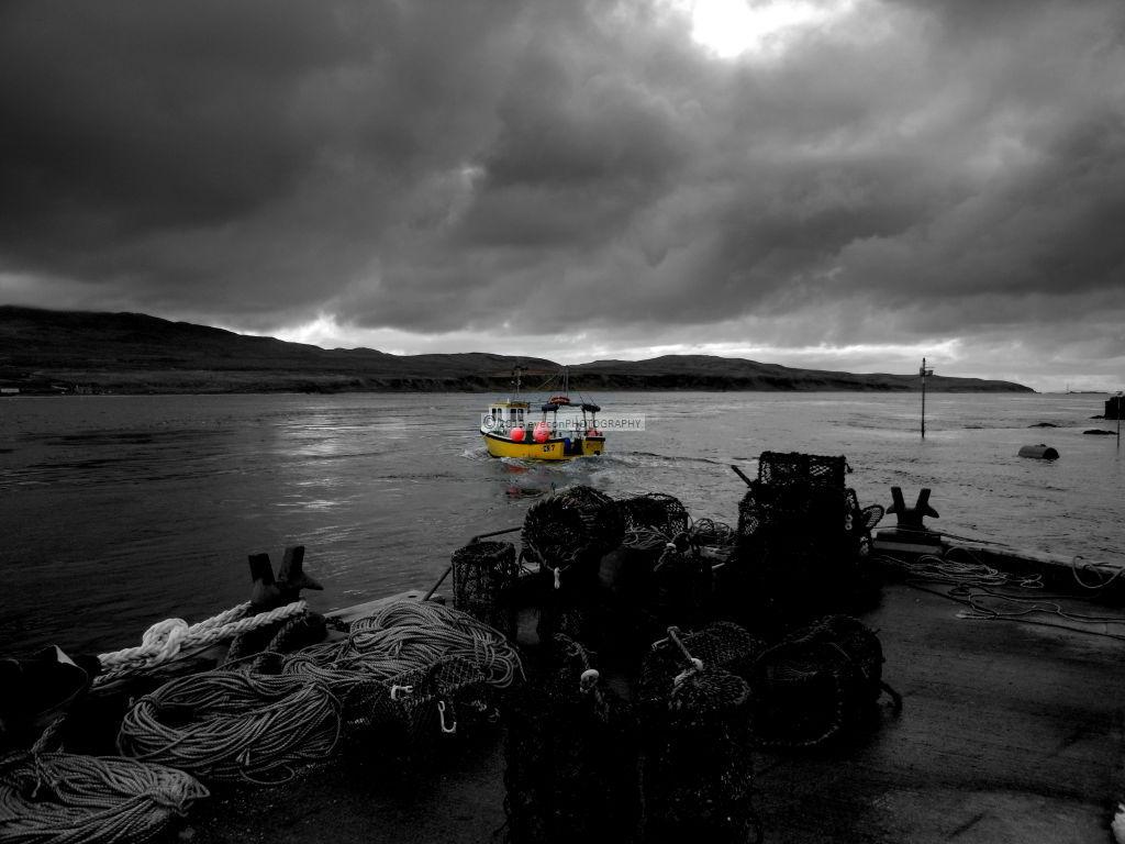 Heading on the trawl