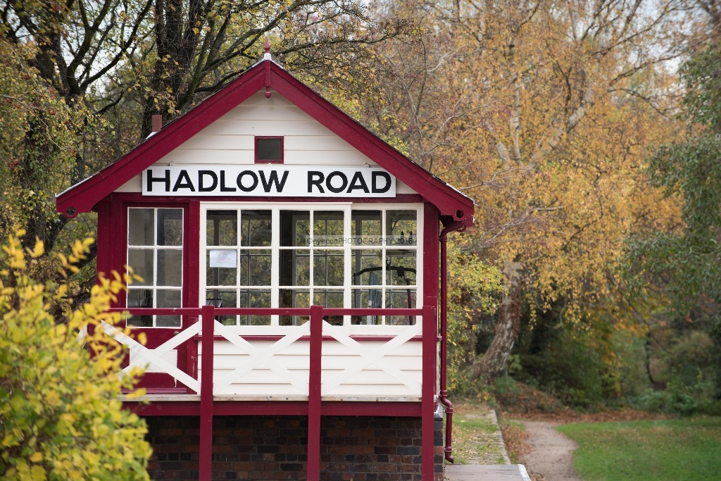 Autumn at Hadlow Road