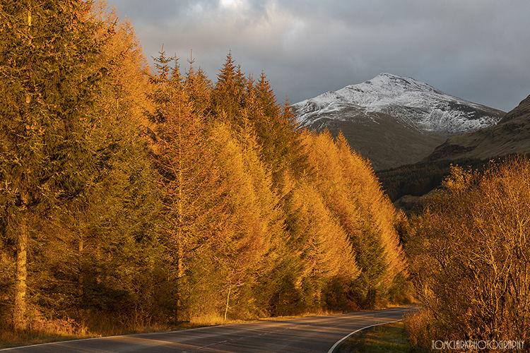 autumn in glen orchy.