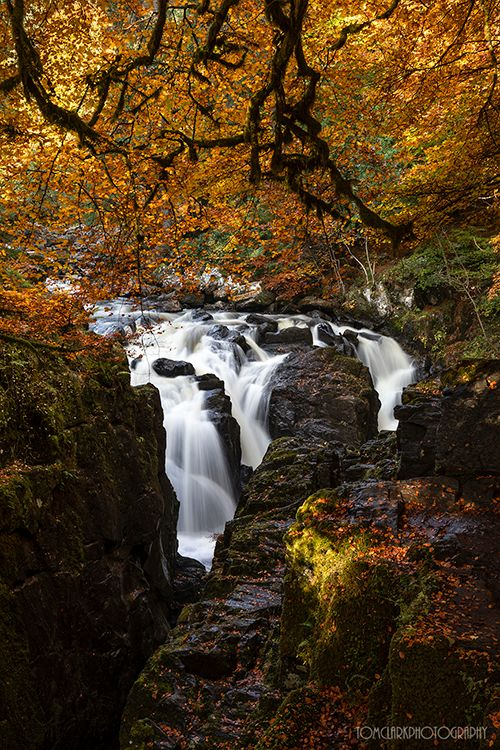 autumn waterfall.