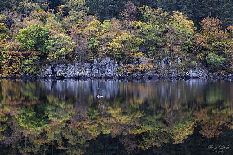 autumnal at loch ard