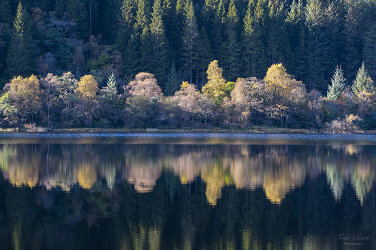 autumnal colours at loch chon