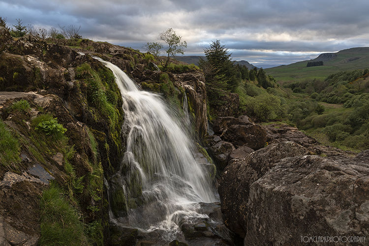 loup of fintry.