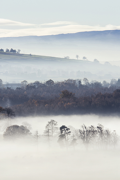 misty hills.