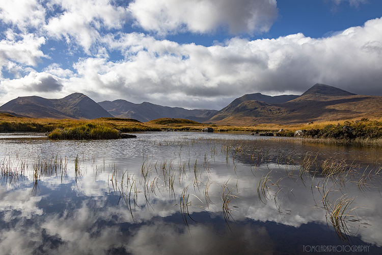 rannoch moor reflections.
