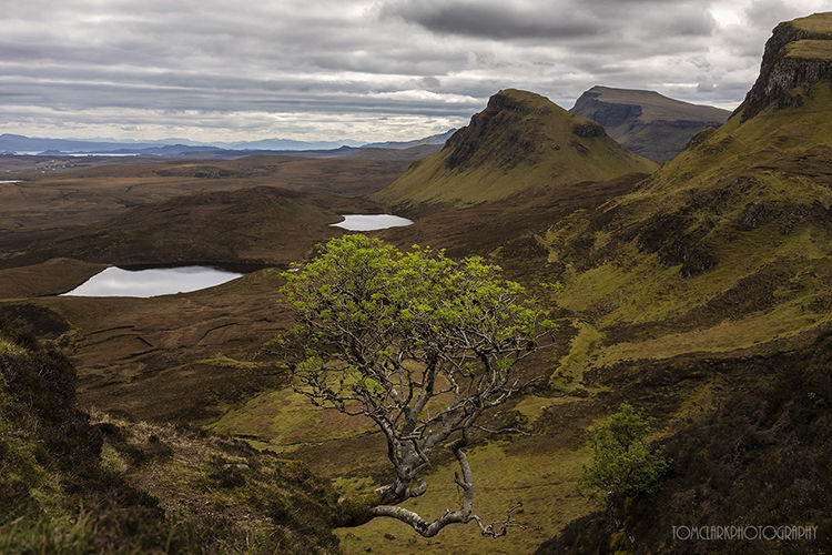 spring at the quiraing.