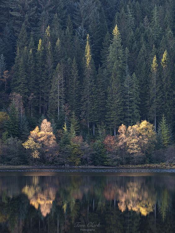 loch chon reflections