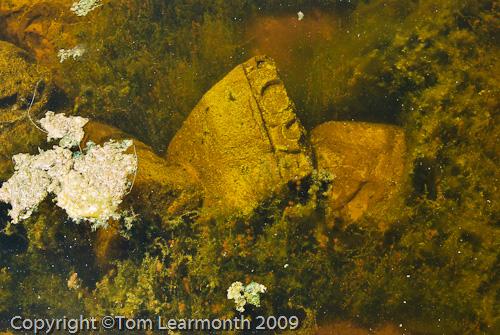 Submerged Roman stonework, Miletus, Turkey