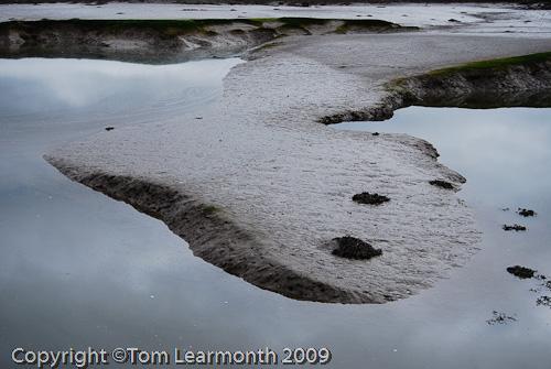 Cleddau Estuary