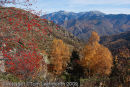 Autumn in the Pyrenees