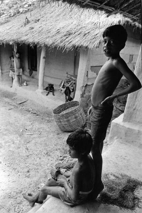 Tea workers village