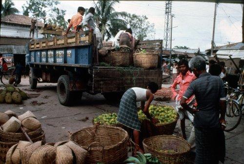 Unloading fruit