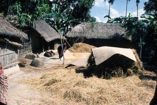 Village, Sylhet district