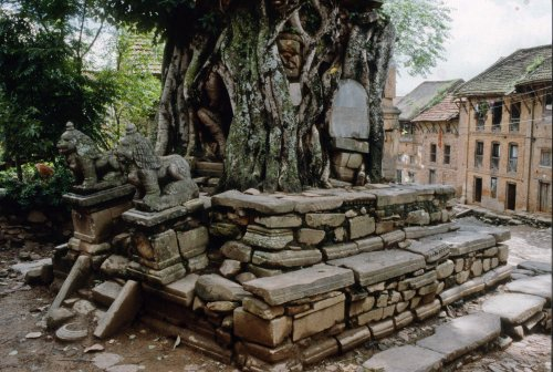 Pipal tree and shrine, Kirtipur