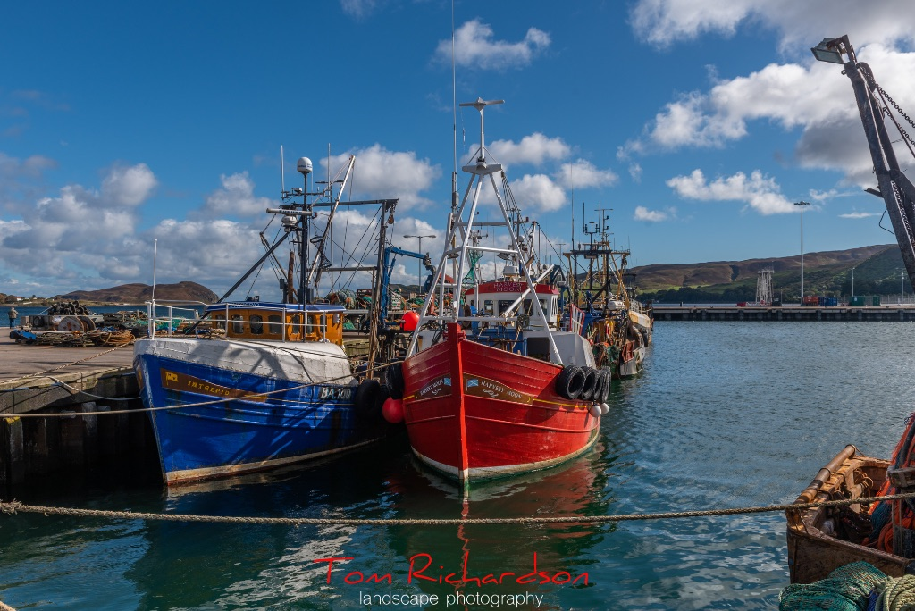 Fishing boats Campbeltown