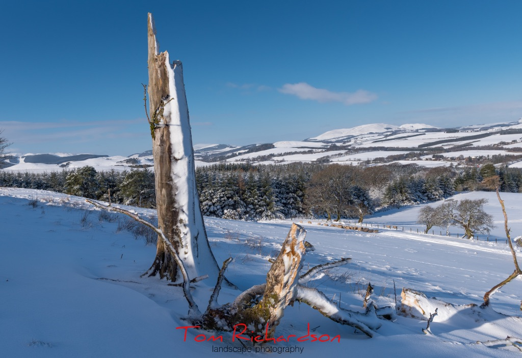 Winter In the Borders