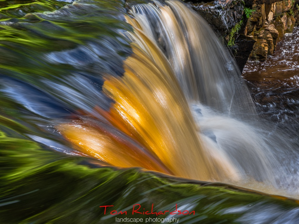 kisdon force 1