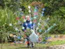 Peacock London Wetlands  2009