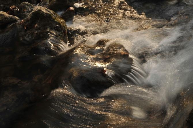 Springs Rivers Oceans-36