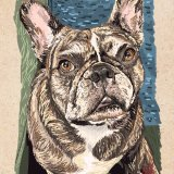 Rueben the French Bulldog