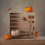 4th Autumn Still Life  by Inna Karpova