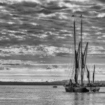 Sailing Barge at Dawn