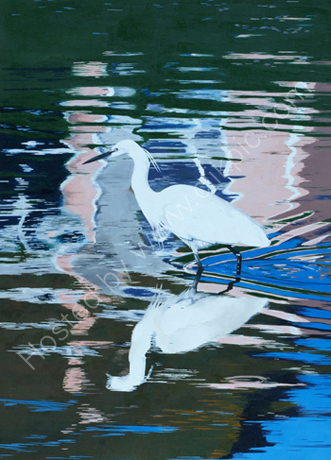 EGRET - REFLECTIONS