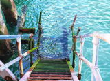 NEWHAVEN PIER STEPS
