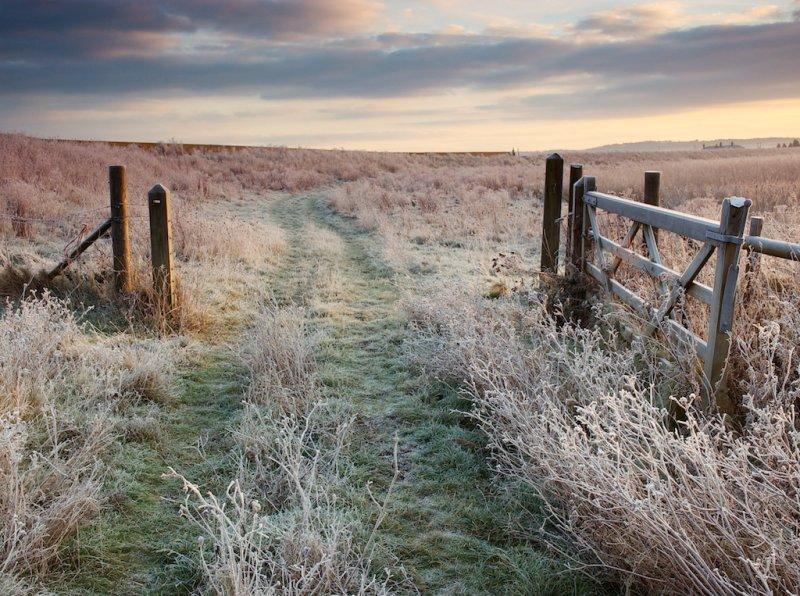 Gate to Graveney, frosty dawn