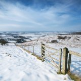 Wye Nature Reserve, Winter view