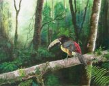 Remember the Moment - Costa Rica - Oils