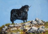 Himalayan Yak on hillside - Mixed Media