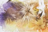 Encaustic Wall Flowers - Wax painting using hot iron techniques