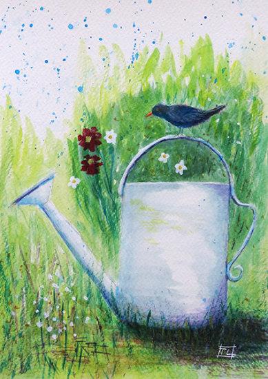 Blackbird & Watering Can