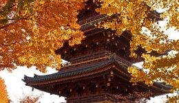 Five storey pagoda