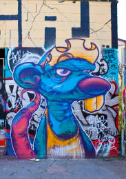 Toronto graffiti image 2