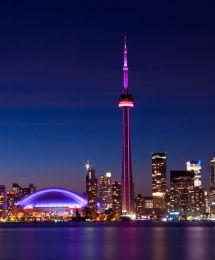 Tower & stadium night image